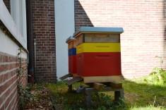 Diese zwei Bienenstöcke befinden sich in unmittelbarer Nähe.