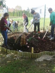 Die Schüler der Garten AG beim Einbringen der Blumenzwiebeln