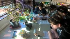 Wie geht das eigentlich mit dem Pflanzen? Sichten der Zwiebeln, Lesen und Verstehen der Pflanzan ...