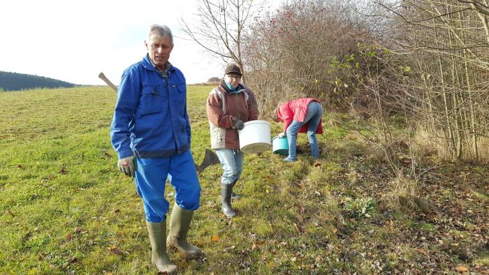 Renovierung Ilmquelle Tandern – Rund um die Ilmquelle wurden Frühlingszwiebeln gepflanzt.