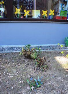 Drinnen blühen die Blumen der Kinder und draußen die echten