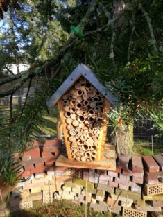 Neues Wildbienen Hotel