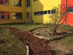 Unser Weg aus Rindenmulch bietet einen tollen Zugang zur Bienoase.