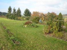 Wir haben einen großen Garten, und selbst ein großes Bienenhaus mit 10 Völkern. Dieser Garten wu ...