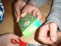 Vorbereitungen für die Distelfalterzucht