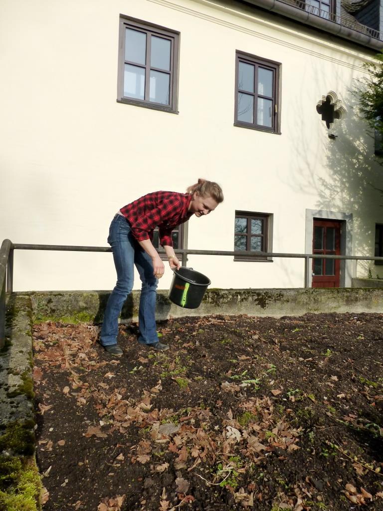 Vorbereitung unserer Blühwiese