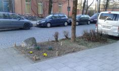 Straßenbegleitgrün vor der geplanten Neubepflanzung