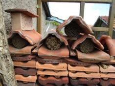 Vermietung der Wildbienen-Wohnungen läuft auf Hochtouren