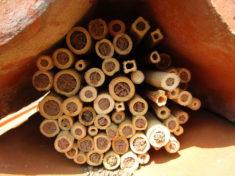 Für Bienchen aller Größen geeignet.