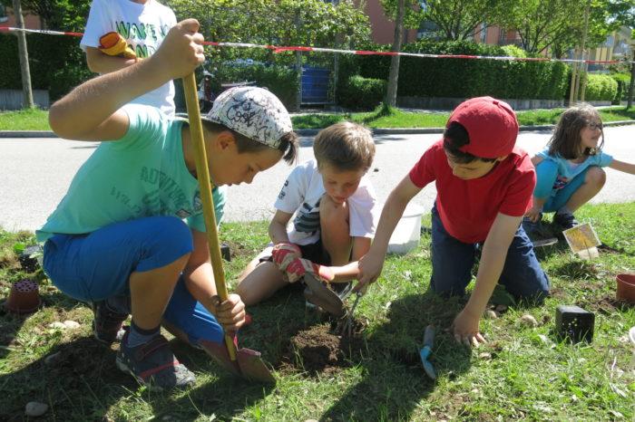 Fleißige Gärtner graben Löcher für die neuen Bewohner – das kann manchmal ziemlich mühsam  ...