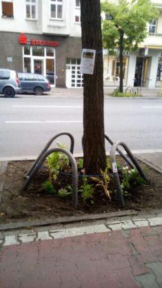 Fertige Baumscheibe