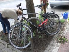 Fahrräder behindern leider oft die Arbeit. Fazit – mrehr Fahrradständer müssen her im Kiez!