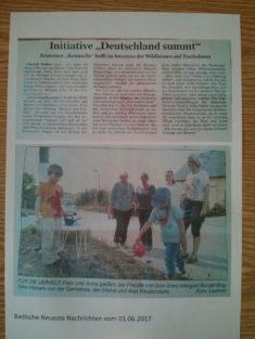 Zeutern summt in der Zeitung