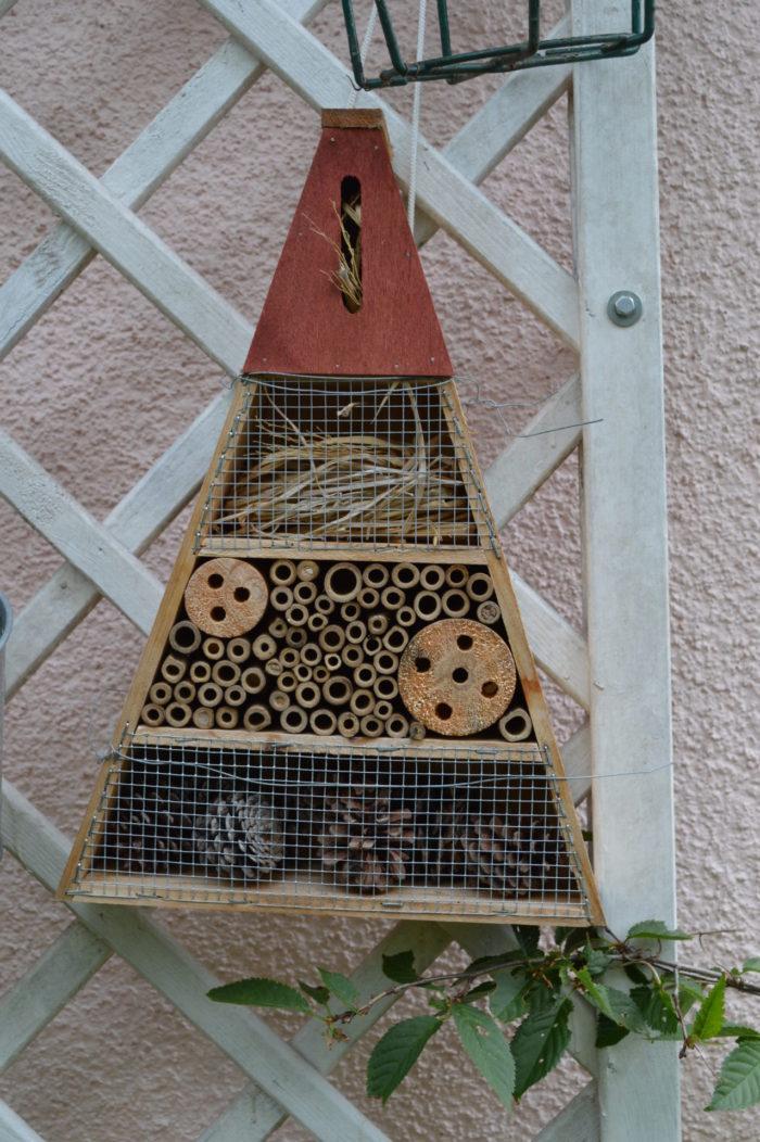 Wir haben auch noch ein Zimmer frei! Das Insektenhotel haben wir schon im letzten Herbst angebra ...