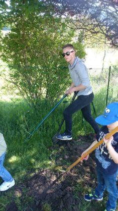 Alle helfen fleißig mit: die Kinder der Igelgruppe und unser Praktikant Florian