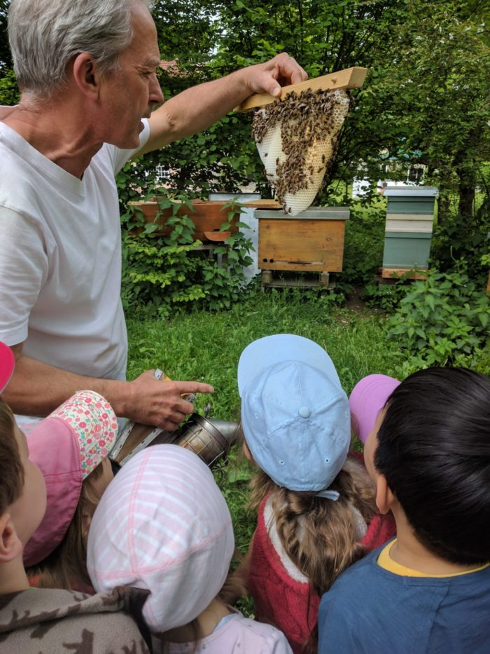 Zu allererst haben wir das Zuhause der fleißigen Bienen in der Imkerei Andreas Pixis besucht!