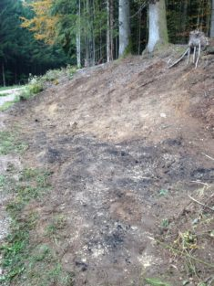 Vorher: Eine Schlagfläche in Bergalingen