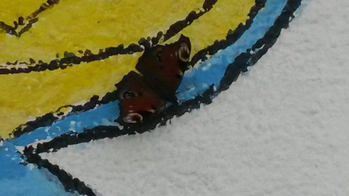 Ein Schmetterling fühlt sich bei uns wohl