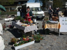 Marktstand mit Bienenblumen