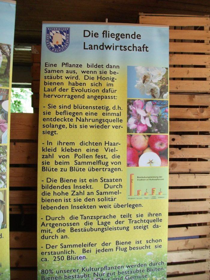 Vortrag des Bienenzuchtvereins bei Obstbauer Poller