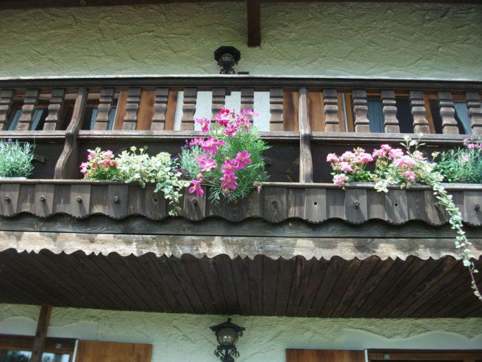 Balkonbepflanzung für Bienen