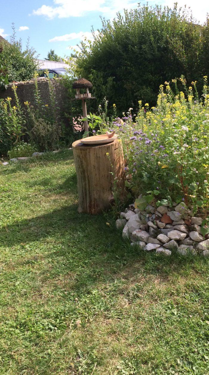 Holzstumpf als Totholz und Vogeltränke