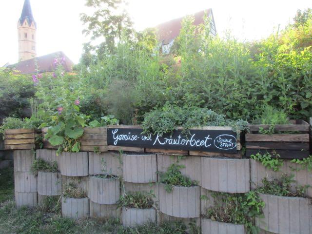 unsere Gemüsekisten für Jedermann ;-)