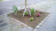 Baumscheibe Baumschulenstraße