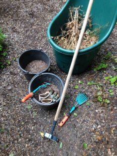 Kleines Projekt: Aussaat im eigenen Garten.