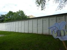 """Biene Glubsch: """"Nur Garagen, Parkplätze und kurz gemähter Rasen hier. Zu fressen finde ich ..."""