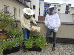 Gemeinsam arbeiten die Beiden daran unsere Dachterrasse weiter aufblühen zu lassen, dass sich un ...