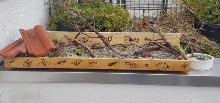 Nachher: Steingarten mit Insektentränke