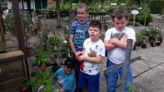 An einem heißen Tag hatten wir die Qual der Wahl in der Gärtnerei.
