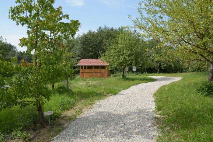 Das Bienenhaus ist fertig: Platz für 8 Bienenvölker – ausser Konkurrenz –