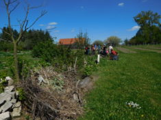 Aktionstag im Frühjahr