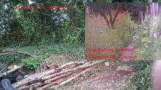 Planung Teilabschnitt B Aufschüttung mit Mohn und Lupiniensamen