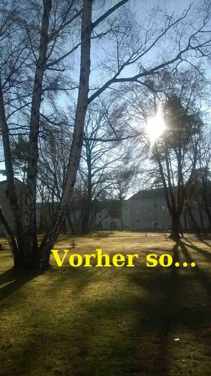 Hier hat es angefangen Februar 2017 – Initative zur Erhaltung der Flora und Fauna der Rath ...