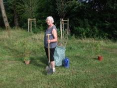 wir pflanzten 8 Kornelkirschen Sträucher im Sportheim Ampfing.