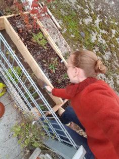 Bepflanzen des Hotspot-Bereichs