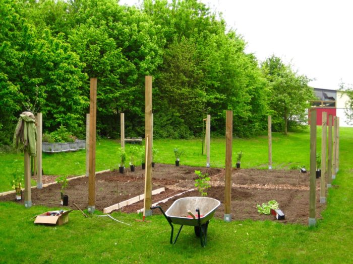 Ein echtes Stück Arbeit: Ein Bauerngarten aus dem Nichts