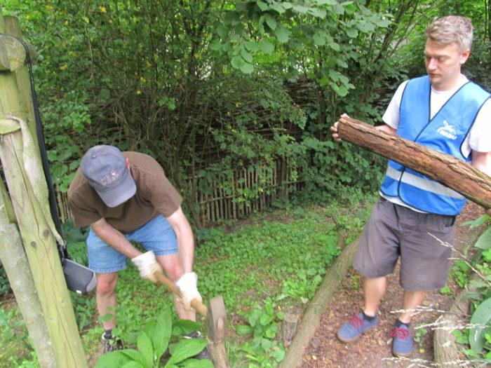 Das Team in Aktion (4/4): Befestigungsarbeiten von Wegen und Terrassen, um die Bienenweide ̶ ...