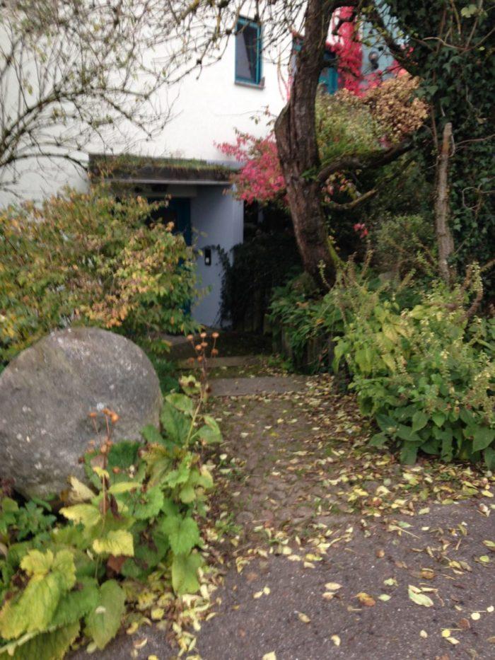 Hotzenwald Naturgarten: Schluchtengarten mit Totbaum und Granitblock und gelben Salbei