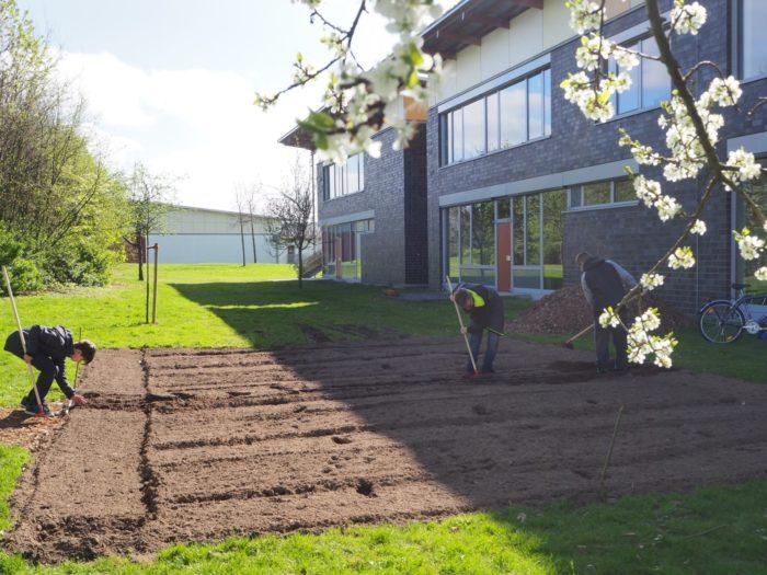 Der Bauerngarten entsteht!