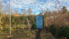 Gestrichene Gartentür von innen